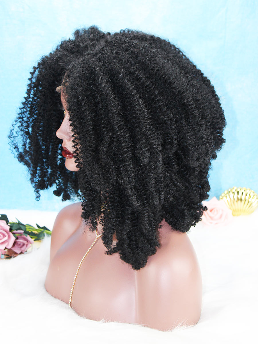 Big Afro Curly Human Hair Glueless Lace Front Wig OC007